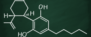what is the difference between cbd and thc? - thc 300x124 - What Is The Difference Between CBD And THC?