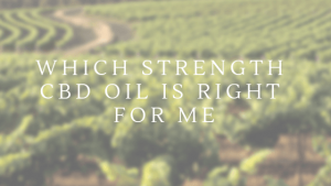 which strength cbd oil is right for me? - Untitled design 1 300x169 - Which Strength CBD Oil is right for me?