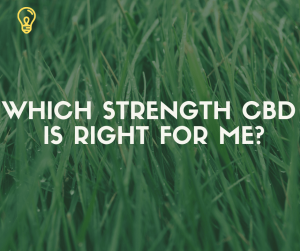 which strength cbd oil is right for me? - Untitled design 300x251 - Which Strength CBD Oil is right for me?