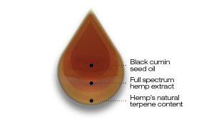 cbd black cumin seed oil 3% - druppel tesktEN 300x175 - CBD Black Cumin Seed Oil 3%