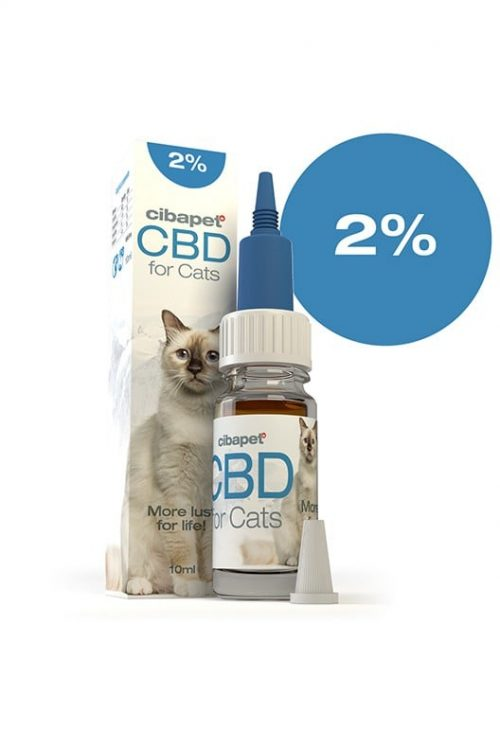cbd oil for cats 2% south africa - cbd oil for cats 2 500x750 - CBD Oil For Cats 2% South Africa